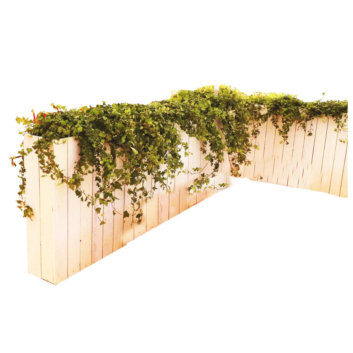 Plante pour jardiniere palette x3 lierre cascade abc for Plante pour jardiniere exterieure